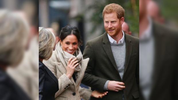 Вчесть невесты принца Гарри назвали парнокопытное