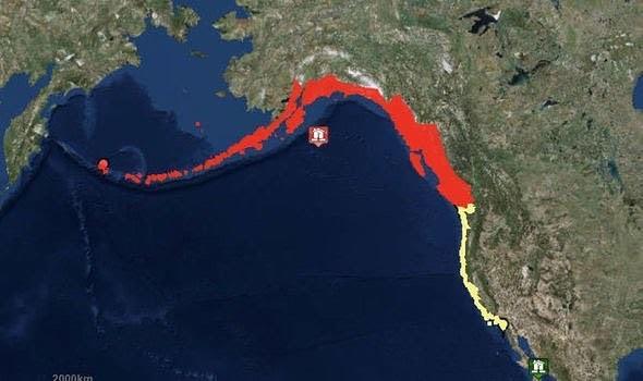 Зона предупреждений о цунами