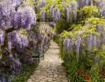 Ботанический сад в Вайнхайме, Германия