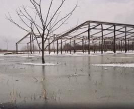 Потоп на Закарпатье: жители региона понесли значительные убытки