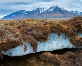 Арктика полна токсичной ртути и это может быть опасным для жизни на Земле - ученые