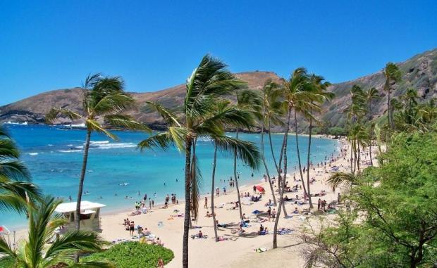 Экологическая катастрофа на Гавайях: сточные воды угрожают питьевой воде и туризму
