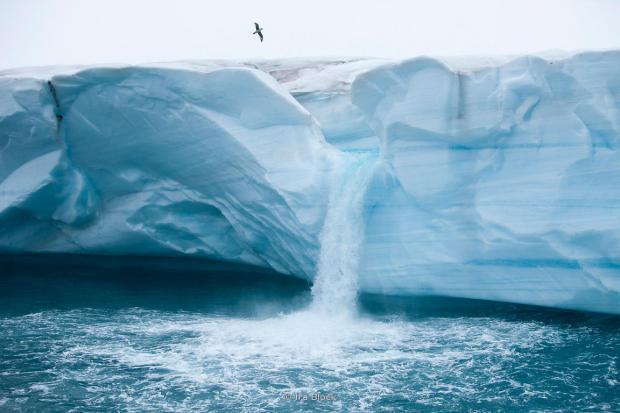 Ученые из Британии рассчитывают отыскать под ледником затерянный мир