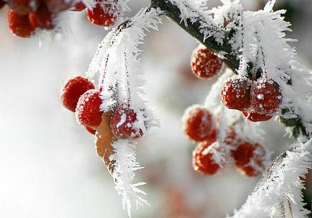 Погода 3-5марта вНовосибирске: холодные выходные