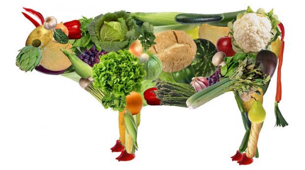 ООН призывает человечество отказаться от мяса