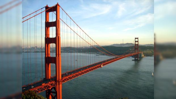 Сан-Франциско стал первым крупным городом в США запретившим продажи натурального меха