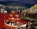 Бухта у Фарерских островов после охоты на китов. Автор — Адам Вулфит.