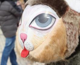 В Киеве открылся восьмой Всеукраинский фестиваль писанок: Софийскую площадь украсили яйца и кролики