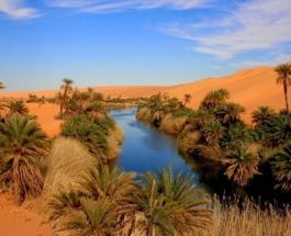 Рай в пустыне: топ-7 невероятно красивых оазисов мира