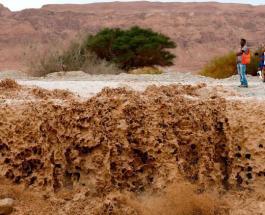 В Израиле ливневые паводки унесли жизнь 9 подростков: МЧС проводит поиск пропавшего ребенка