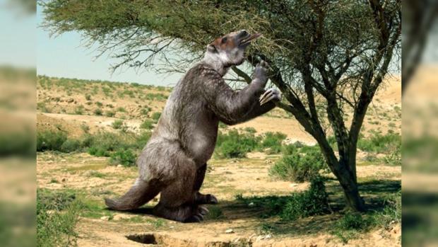 Ученые отыскали следы поразительной схватки доисторического человека