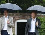 Гарри и Уильям посещают Белый сад (открытый в честь памяти Дианы) в Кенсингтонском дворце. (2017)