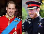 Уильям носил красную форму Ирландской гвардии, а Гарри форму вооруженных сил королевы - Blues and Royals