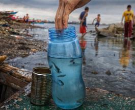Экологическая катастрофа: топ-10 фото будоражащих сознание неравнодушных к природе людей