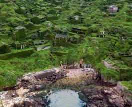 Удивительный город-призрак: опустевшее поселение в Китае полностью покрылось растениями
