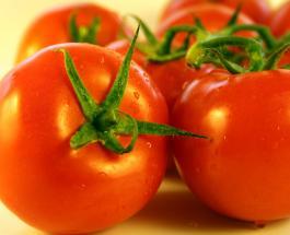Домашние заготовки: как выбрать идеальные помидоры для консервирования