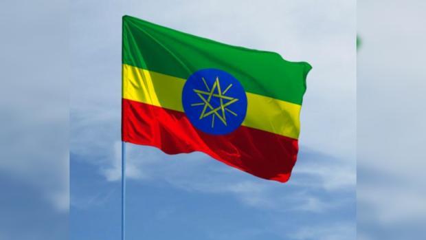 Войне конец: власти Эфиопии и Эритреи после 30 лет вражды подписали мировое соглашение