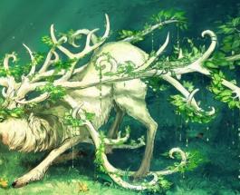 Самые древние магические растения: история применения и легенды