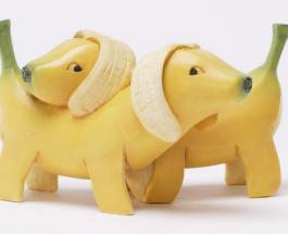 Банановая кожура: ее плюсы и полезные применения