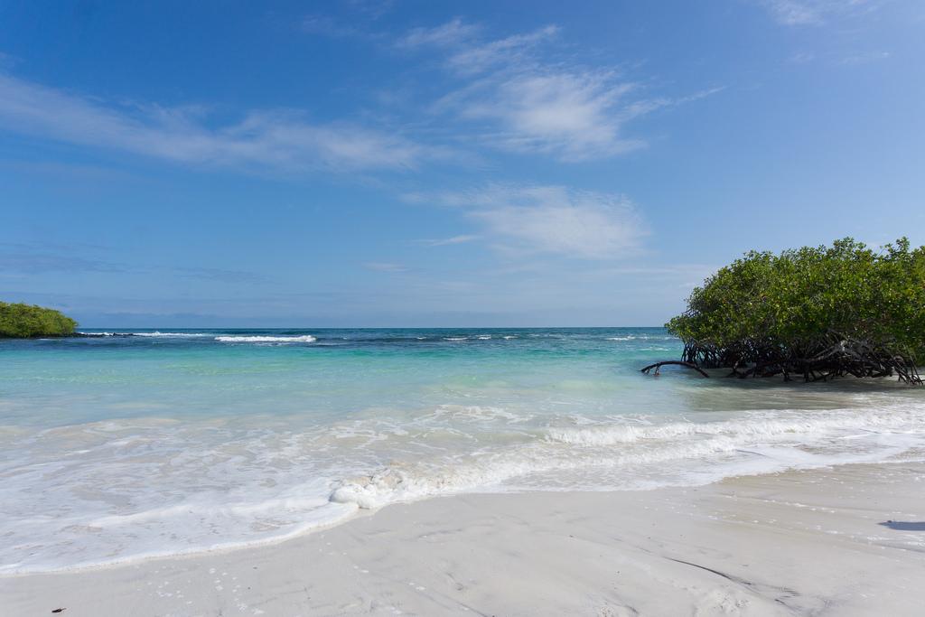 Galapagos Beach at Tortuga Bay - Пуэрто-Айора, Эквадор