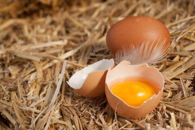 Яйца со скорлупой