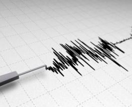 Три землетрясения за сутки: Польша Австралия и Северная Европа ощутили сильные толчки