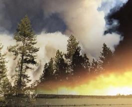 Страшный лесной пожар в Калифорнии: десятки тысяч людей эвакуированы но есть погибшие