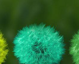 Маникюр в зеленых тонах: лучшие идеи в соответствии с модными трендами