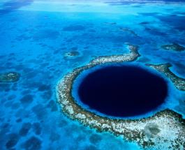 Что скрывает Большая голубая дыра: исследованием занялись Ричард Брэнсон и Фабьен Кусто
