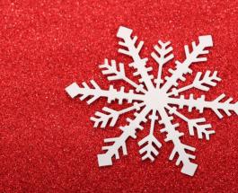 Снежинки под микроскопом: неповторимость форм и линий крошечных частичек снега завораживает