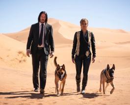 Джон Уик 3: сюжет новой части фильма раскрывает первый официальный трейлер