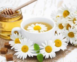 Чай с ромашкой: максимум пользы и минимум вреда - самый благотворный напиток