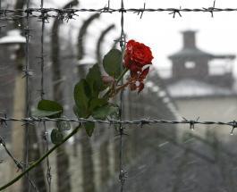 День памяти жертв Холокоста 2019: ЮНЕСКО покажет новый фильм о страданиях еврейского народа