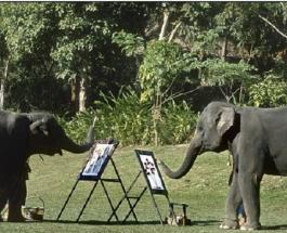 Искусство которому нет равных: яркие рисунки написанные величественными слонами