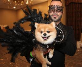 Показ мод для собак: благородная миссия и красочное шоу необычного мероприятия