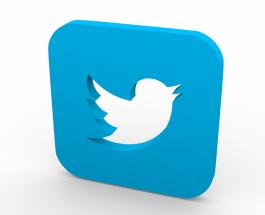 Twitter запускает новую функцию перед выборами в Европарламент