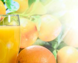 Польза цитрусовых: причины по которым следует чаще употреблять экзотические фрукты