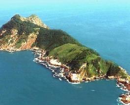 Самый опасный остров в мире – Змеиный: запрещенное для туристов место в океане