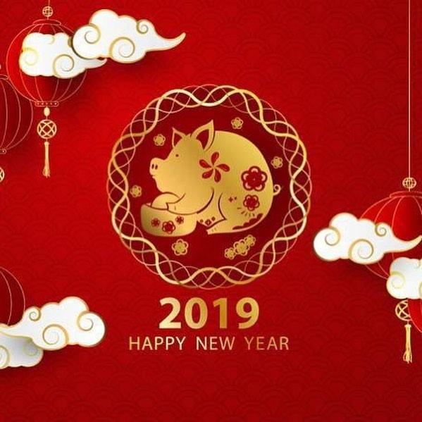 Китайский новый год открытки 2019, котэ картинки