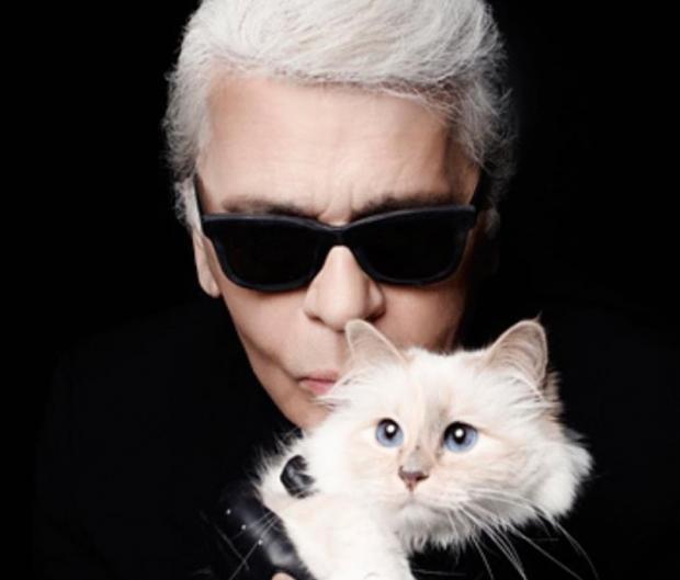 Пушистый кот Карла Лагерфельда в Инстаграм: как живет любимый питомец знаменитого модельера