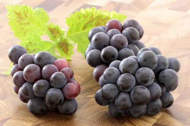 Полезные свойства кожицы и косточек винограда