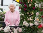 Весна в Букингемском дворце: в саду королевской семьи распустились первые цветы