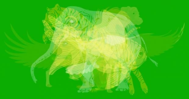 картинка, тест, животные
