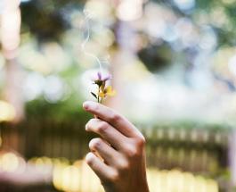 Как бросить курить: полезные советы пригодятся всем кто решил вести здоровую жизнь
