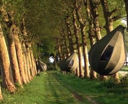 """""""Дома на деревьях"""": необычные подвесные палатки полюбившиеся любителям кемпинга"""