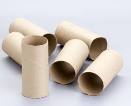 Оригинальные способы повторного использования втулок от туалетной бумаги
