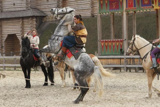 лошадь, всадник