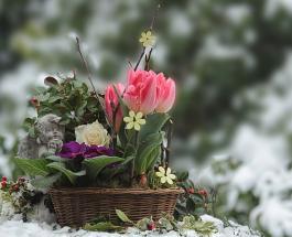 Гисметео Украина: погода на 4 апреля - похолодание и местами мокрый снег