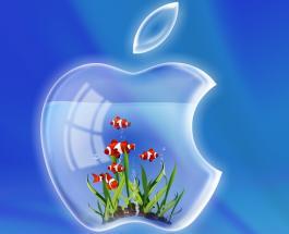 Apple удивляет возможностями видеосъемки iPhone XS и iPhone XS Max