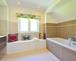 Плесень в ванной: 4 способа избавиться от грибка